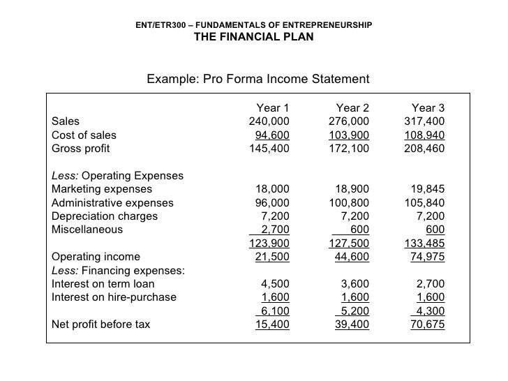 3 year income statement template ent300 module11