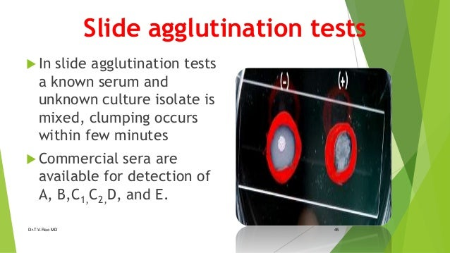 agglutination formal report The presence of an antigen or anti-bodies in a blood sample can be found out using either the particle agglutination test (pat) report writing service.