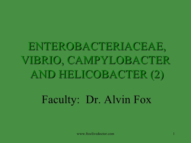 Faculty:  Dr. Alvin Fox ENTEROBACTERIACEAE,  VIBRIO, CAMPYLOBACTER  AND HELICOBACTER (2) www.freelivedoctor.com