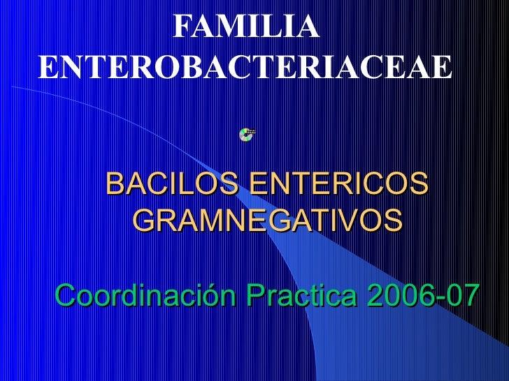 FAMILIAENTEROBACTERIACEAE   BACILOS ENTERICOS    GRAMNEGATIVOSCoordinación Practica 2006-07