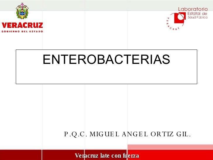 ENTEROBACTERIAS P.Q.C. MIGUEL ANGEL ORTIZ GIL.