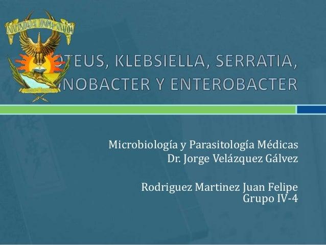 Microbiología y Parasitología Médicas           Dr. Jorge Velázquez Gálvez      Rodriguez Martinez Juan Felipe            ...