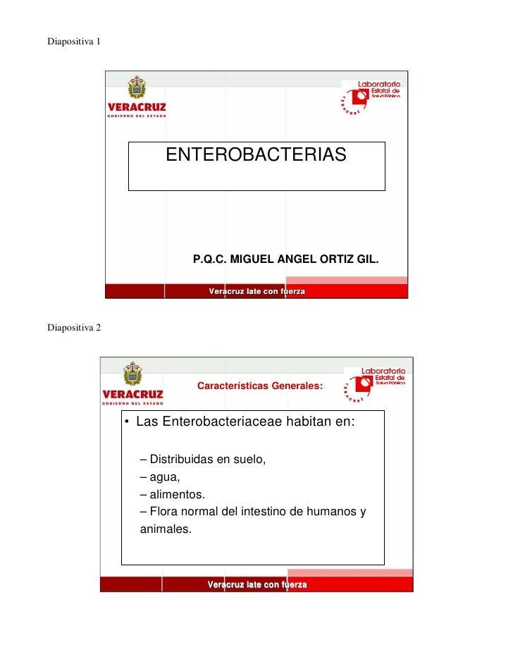Diapositiva 1                           ENTEROBACTERIAS                                P.Q.C. MIGUEL ANGEL ORTIZ GIL.     ...