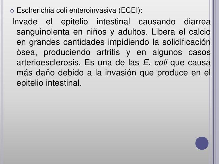    Escherichia coli enteroinvasiva (ECEI):Invade el epitelio intestinal causando diarrea sanguinolenta en niños y adultos...