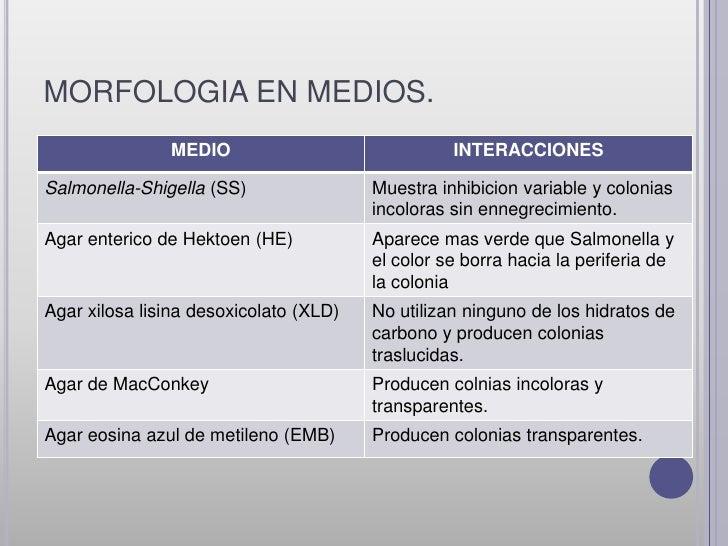PERFIL BIOQUÍMICO•ALC/A (M.O fermenta glucosa y no           •RM POSITIVO.lactosa)•NO PRESENCIA DE GAS.                   ...