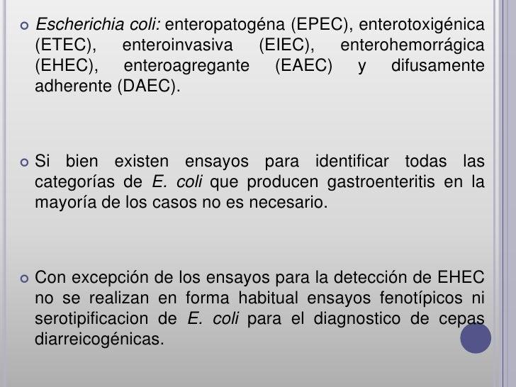    Escherichia coli: enteropatogéna (EPEC), enterotoxigénica    (ETEC), enteroinvasiva (EIEC), enterohemorrágica    (EHEC...