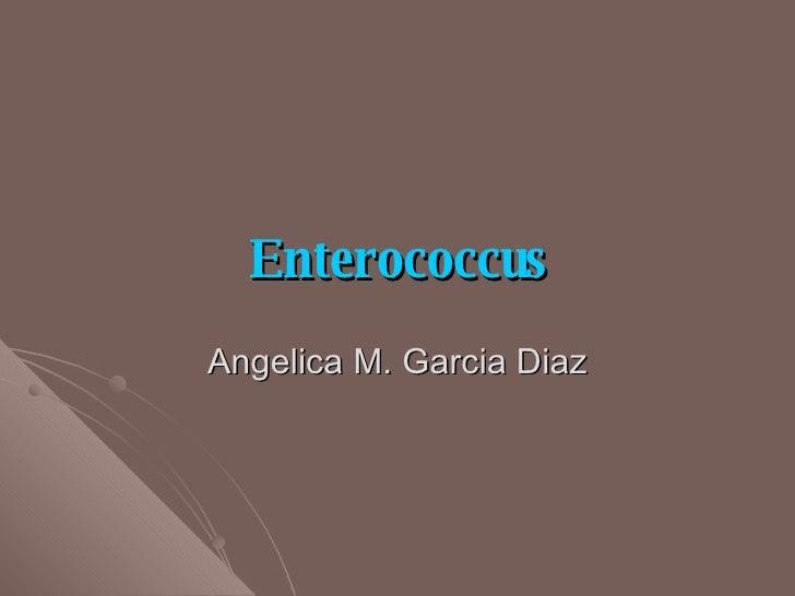 Enterococcus Angelica M. Garcia Diaz