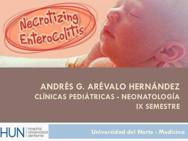 ANDRÉS G. ARÉVALO HERNÁNDEZCLÍNICAS PEDIÁTRICAS - NEONATOLOGÍA                          IX SEMESTRE              Universid...