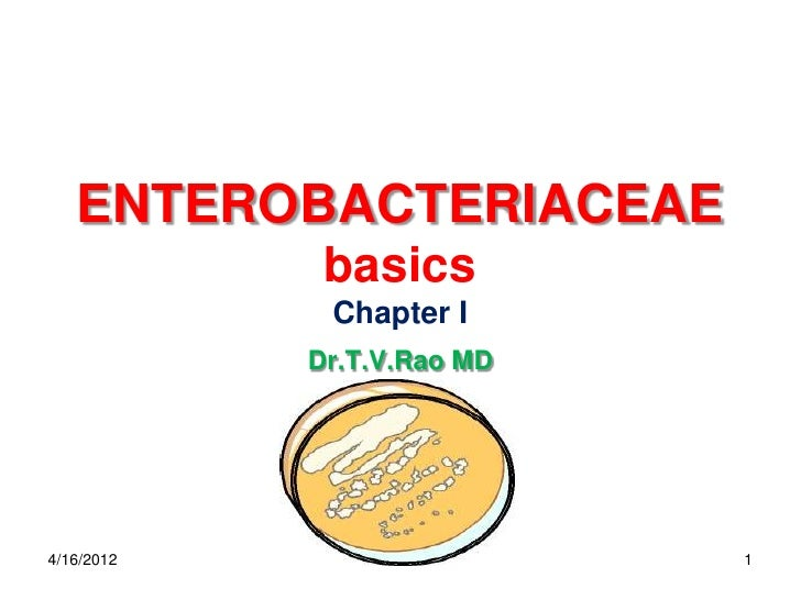 ENTEROBACTERIACEAE             basics             Chapter I            Dr.T.V.Rao MD4/16/2012     Dr.T.V.Rao MD   1