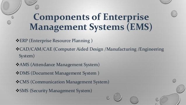 Management of public enterprises business plan