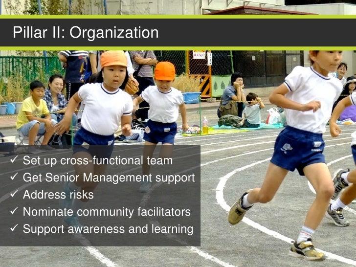 Pillar II: Organization   Set up cross-functional team   Get Senior Management support   Address risks   Nominate comm...