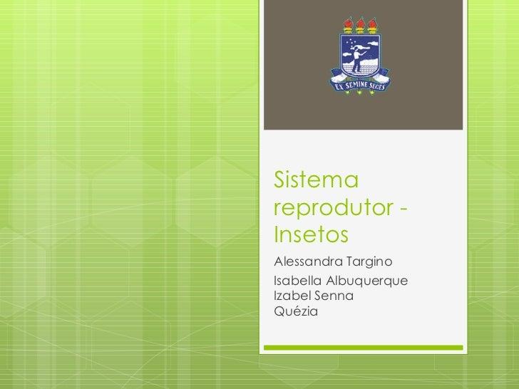 Sistema reprodutor - Insetos Alessandra Targino Isabella Albuquerque Izabel Senna Quézia
