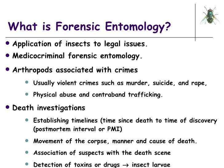 forensics entomology and bugs Forensic entomology notes design a chamber to collect the insect and other forensic insects outdoors in an open environment your design should include some type of structure that will allow odors to escape and insect to enter.