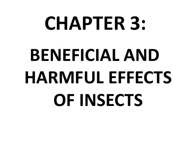 Introductory Entomology (ENT 201)