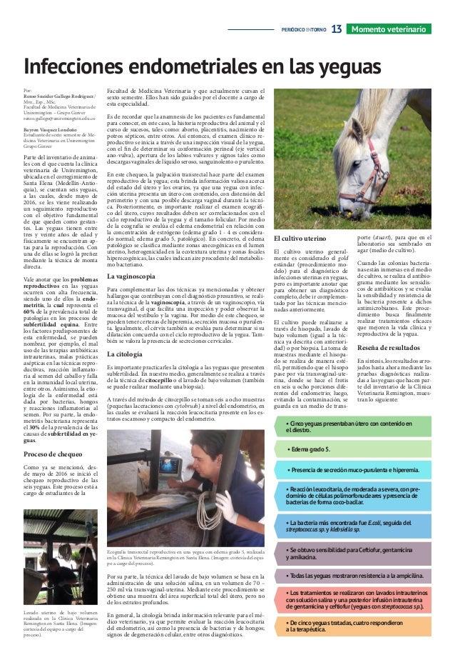 Periódico EnTorno mayo 2017 Uniremington