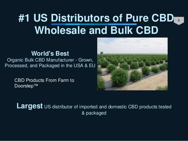 6#1 US Distributors of Pure CBD Wholesale and Bulk CBD World's Best Organic Bulk CBD Manufacturer - Grown, Processed, and ...
