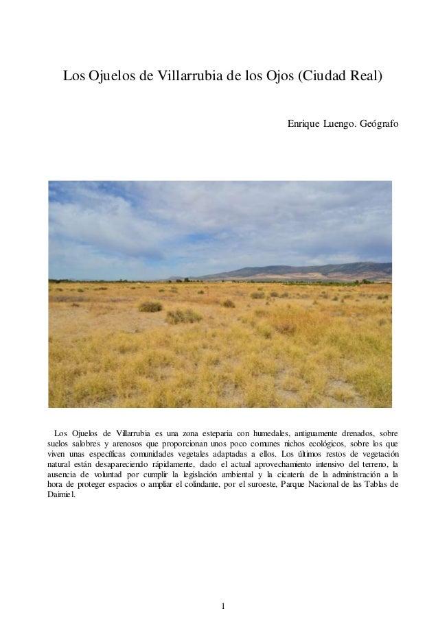 1 Los Ojuelos de Villarrubia de los Ojos (Ciudad Real) Enrique Luengo. Geógrafo Los Ojuelos de Villarrubia es una zona est...