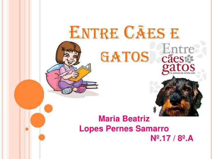 ENTRE CÃES E      GATOS     Maria Beatriz Lopes Pernes Samarro                   Nº.17 / 8º.A