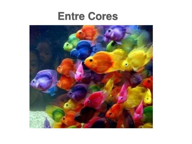 Entre Cores<br />