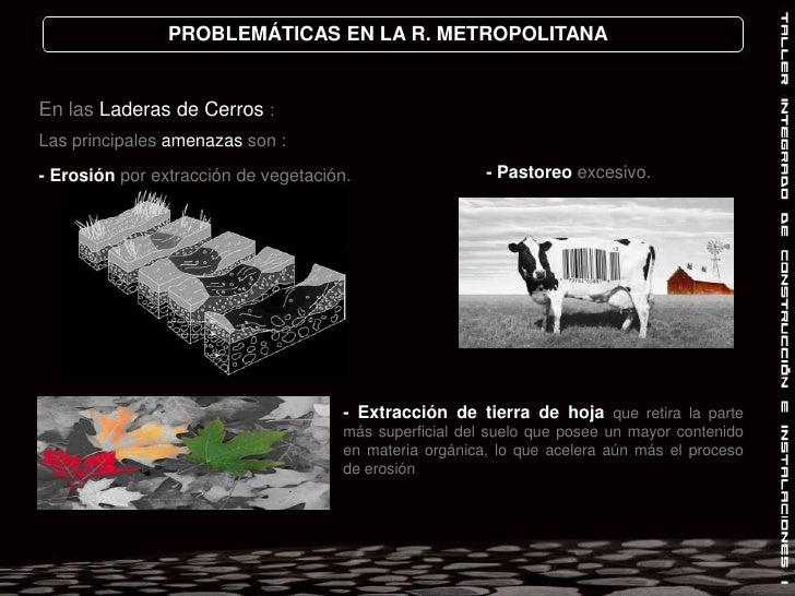 PROBLEMÁTICAS EN LA R. METROPOLITANA<br />En las Laderas de Cerros :<br />Las principales amenazas son :<br />- Pastoreo e...