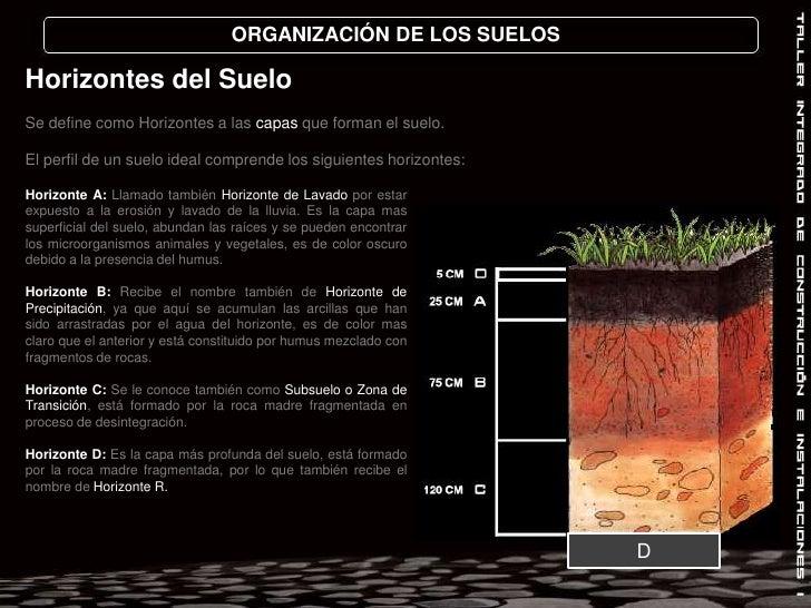 ORGANIZACIÓN DE LOS SUELOS<br />Horizontes del Suelo<br />Se define como Horizontes a las capas que forman el suelo. <br /...