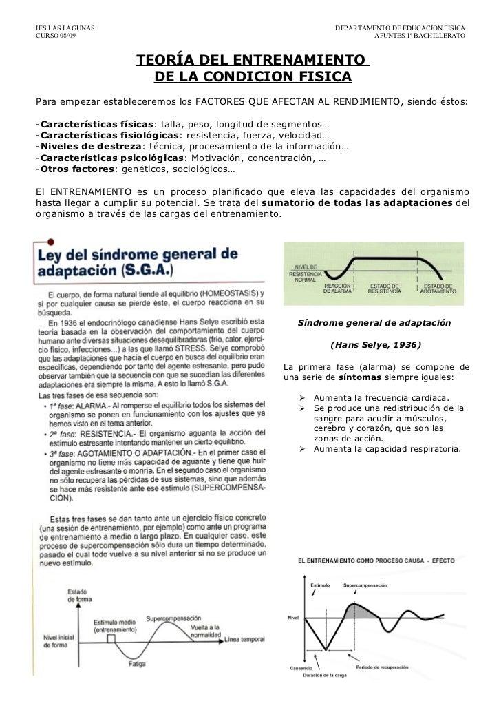 IES LAS LAGUNAS                                               DEPARTAMENTO DE EDUCACION FISICACURSO 08/09                 ...