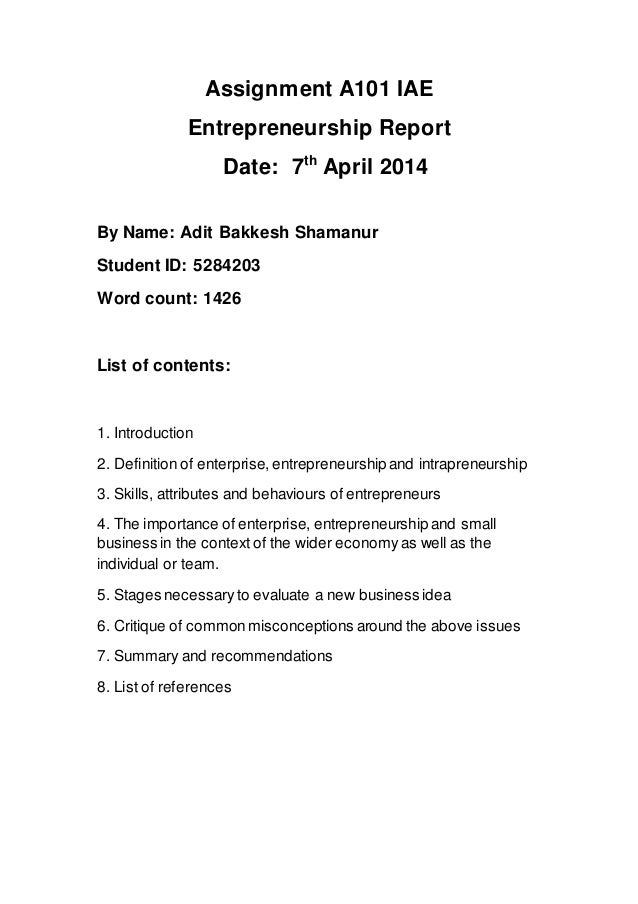 Entrepreneur report assignment