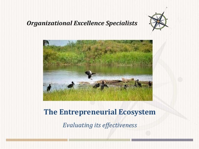 The Entrepreneurial Ecosystem Evaluating its effectiveness