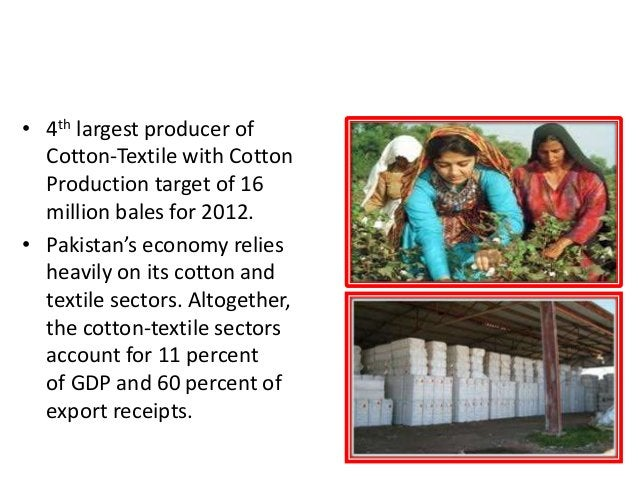 COTTON (60 % of total Export by cotton-textile) • 4th largest producer of Cotton-Textile with Cotton Production target of ...