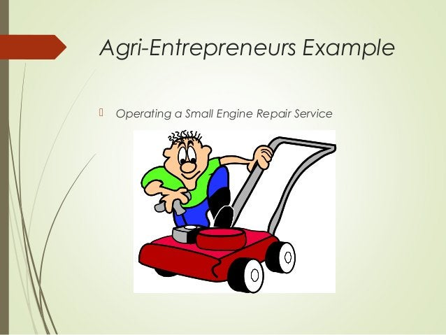 Agri-Entrepreneurs Example   Operating a Small Engine Repair Service