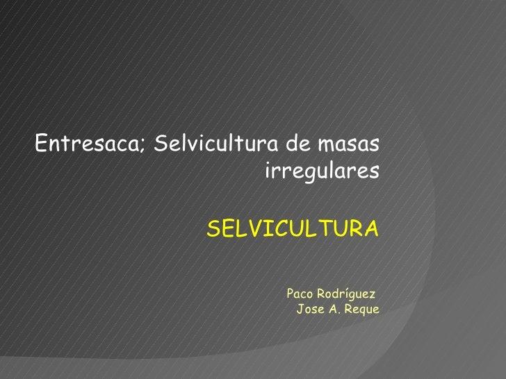 SELVICULTURA Entresaca; Selvicultura de masas irregulares Paco Rodríguez  Jose A. Reque