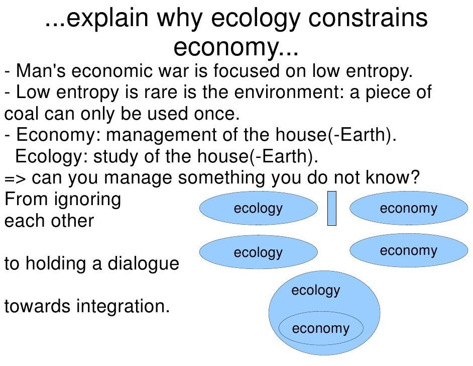 Entropy env economics