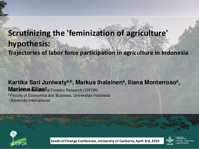 Scrutinizing the 'feminization of agriculture' hypothesis: Trajectories of labor force participation in agriculture in Ind...