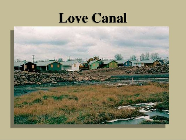 an analysis of the 1890s niagara falls canal by william t love The canal itself 1 dates back to the 1890s: an abortive attempt to bypass niagara falls that barely got started before funding ran out as the surrounding town grew, the abandoned excavations were used to dump first municipal waste and then, by the 1940s, 55-gallon drums of waste from a nearby.