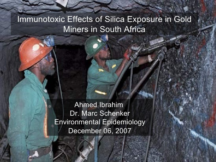 Immunotoxic Effects of Silica Exposure in Gold Miners in South Africa Ahmed Ibrahim  Dr. Marc Schenker Environmental Epide...