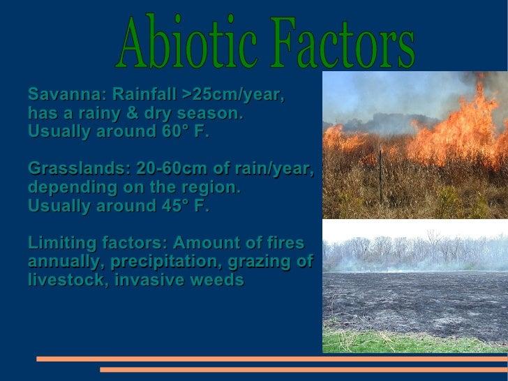 Temperate grassland abiotic features