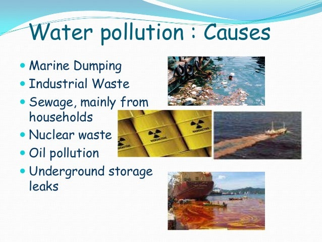 marine pollution solution Marine pollution was a major area of discussion during the 1972 united nations  one proposed solution to eutrophication in estuaries is to restore shellfish .
