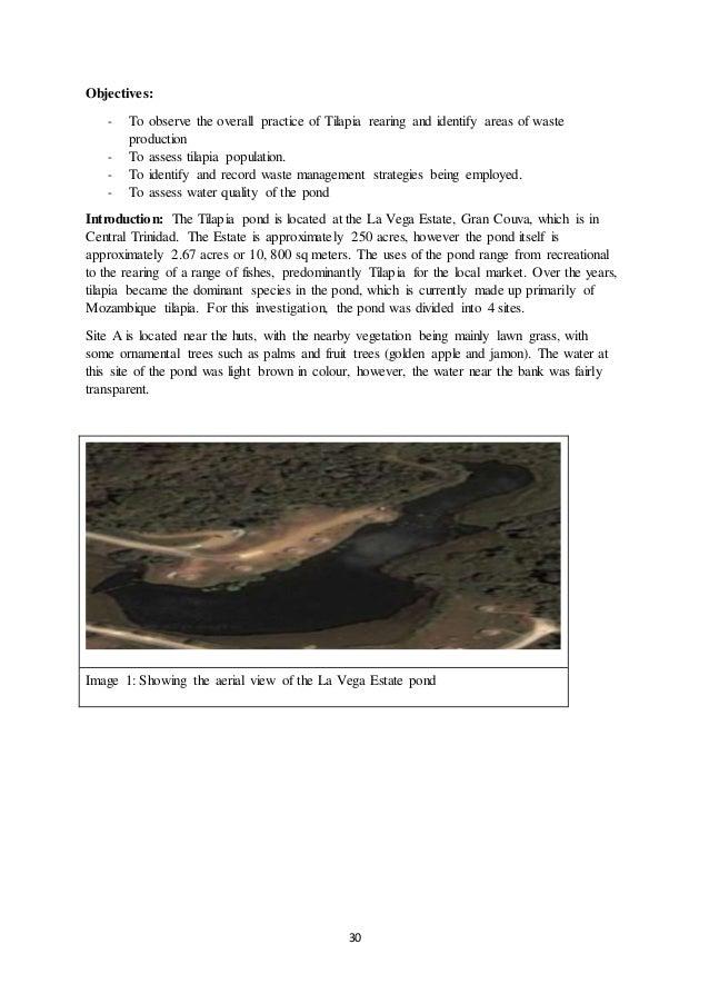 Water pollution in trinidad and tobago environmental sciences essay