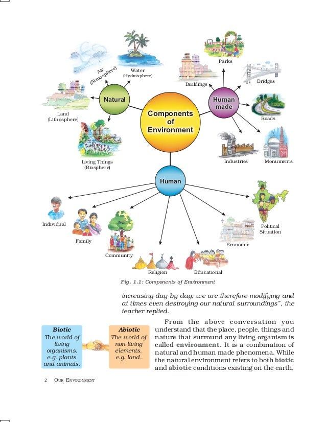components of the ecosystem The study of ecosystems mainly consists of the study of certain processes that link the living, or biotic, components to the non-living, or abiotic, components the two main processes that ecosystem scientists study are energy transformations and biogeochemical cycling .