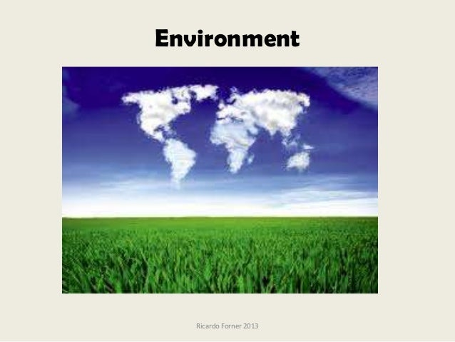 Environment  Ricardo Forner 2013