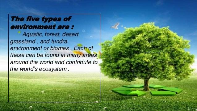 environment presentation