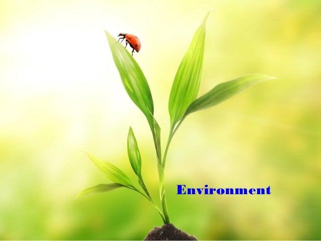 Environment powerpoint template doritrcatodos environment powerpoint template toneelgroepblik Choice Image