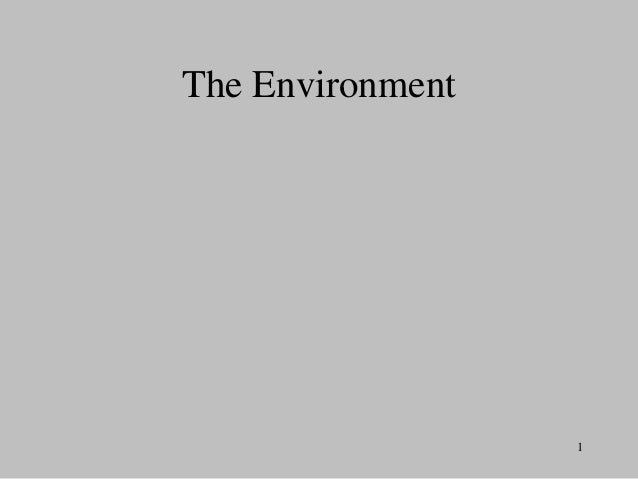 The Environment  1