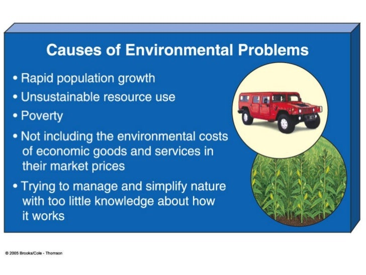 environmental problems in the world essay The major environmental problems that are facing the world essays related to environmental issues 1 the environment can be seen environmental issues.