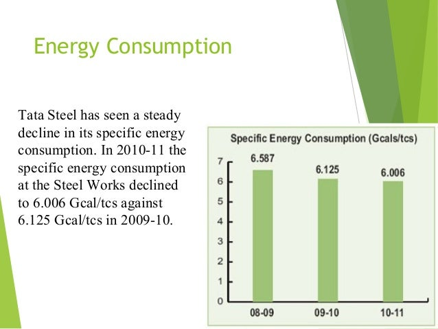 Case Study of Tata Steel Company essay