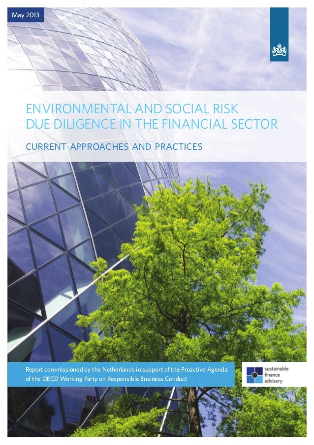 ENVIRONMENTAL AND SOCIAL RISK DUE DILIGENCE IN THE FINANCIAL SECTOR current approaches and practices May 2013 Report commi...