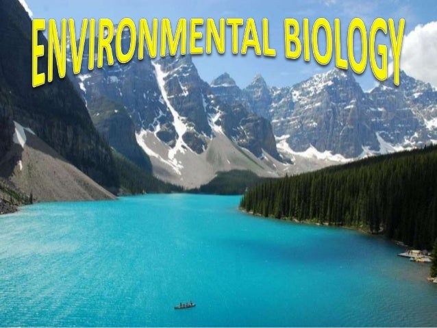 Topic deals with how humans affect  the environment  In a negative way  In a positive way