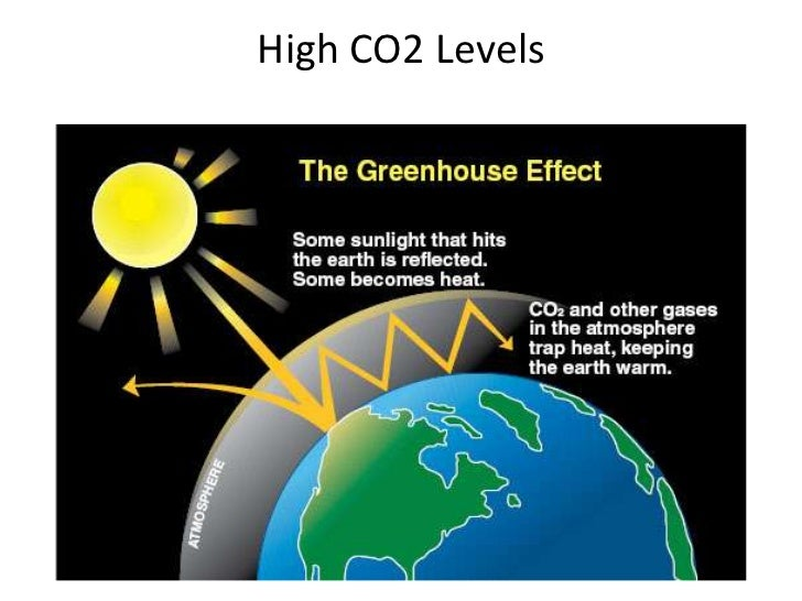 effects of three environmental problems acid rain global warming and depletion of ozone layer Acid rain, global warming, ozone depletion - free download as • explain the causes and effects of acid rain • describe the problem of ozone layer depletion and formation of the ozone hole over the antarctic • outline the provisions effect of acid rain on trees environmental.