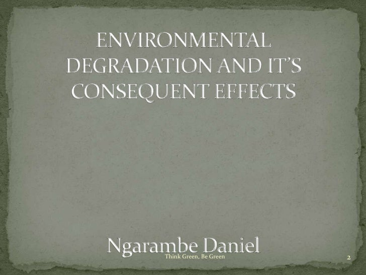 effects of environmental degradation pdf