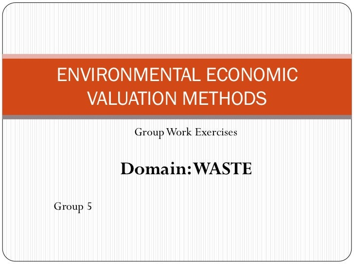 ENVIRONMENTAL ECONOMIC   VALUATION METHODS           Group Work Exercises          Domain: WASTEGroup 5